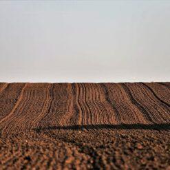Lavorazione Terreno usato