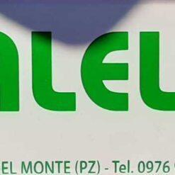 Galella